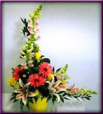 Solidaster Flowers on Asymmetrical Arrangement   Celia Reyna